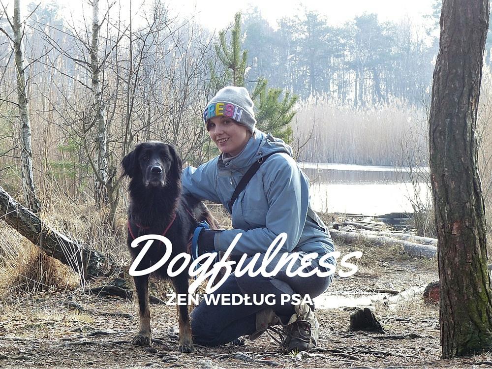 Dogfulness (1)